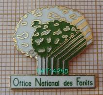 ONF OFFICE NATIONAL Des FORETS En Version EGF - Amministrazioni