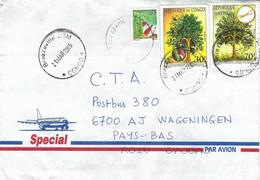Congo 2005 Brazzaville Medicinal Plant Root Bark Moringa Tree Cover - Heilpflanzen