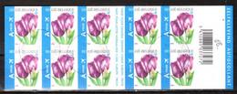 B66  Tulipe Rembrandt - Bonne Valeur - Oblit. Centrales - LOOK!!!! - Markenheftchen 1953-....