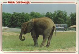 Safari De Peaugres- L'Elephant - (P) - Unclassified