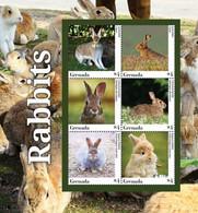 Antigua And Barbuda 2020  Fauna Rabbits  I202008 - Antigua And Barbuda (1981-...)