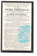 DP Elisa Beeckman / Van Roy 38j. ° Denderbelle Lebbeke 1864 † 1902 X Alphons Uyttersprot - Santini