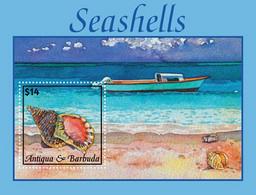 Antigua And Barbuda 2020  Seashells   I202008 - Antigua And Barbuda (1981-...)