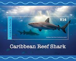 Antigua And Barbuda 2020   Fauna Caribbean Reef Shark I202008 - Antigua And Barbuda (1981-...)