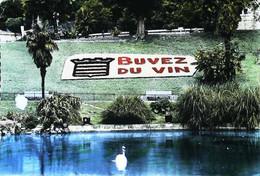 ►  CPSM Beziers  Art Floral Buvez Du Vin  Mosaîculture - Advertising