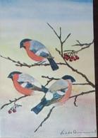 Petit Calendrier De Poche 1978 APBP Illustration Peint Avec Le Pied Les Oiseaux - Bouvreuil Pivoine - Small : 1971-80