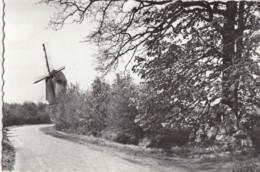 BOUWEL / GROBBENDONK / ECHELPOEL / MOLEN - Grobbendonk