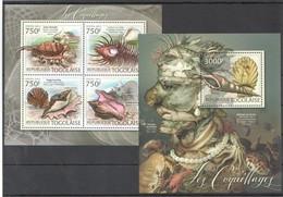 TG830 2012 TOGO TOGOLAISE FAUNA FISH & MARINE LIFE LES COQUILLAGES SEASHELLS 1KB+1BL MNH - Schelpen