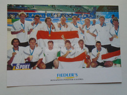 D179986    Hungary  Gold Medal Winner Water Polo Team -  Sydney Olympic Games  2000 - Water Polo