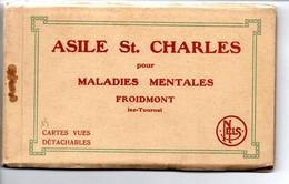 Froidmont: Asile St. Charles: Carnet Avec 15 Cartes - Tournai