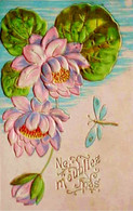 Cpa Gaufrée NENUPHARS FLEURS De NENUPHAR & LIBELLULE , Insecte , 1906 ,FLOWERS WATER LILY AND DRAGONFLY Embossed OLD PC - Flowers