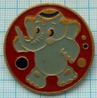 USSR / Badge / Soviet Union / RUSSIA. Circus. Fauna. Elephant. - Animaux