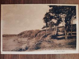 Guipavas. Le Rody Moulin Blanc.Le Bois De Sapins - Autres Communes