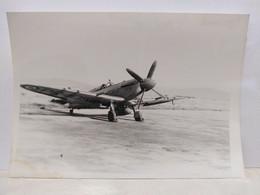 Avion Seafire. 9x12.5 Cm - Aviation
