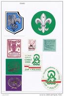 POLAND Polen C A1960 - 2000 Stickers Labels Aufkleber Vignetten Cinderellas Pfadfinder Scouting Thema - Pfadfinder-Bewegung