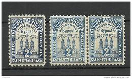 DENMARK Dänemark 1880 KOBENHAVN Lokalpost Local City Post 2 öre Dark & Light Blue * - Lokale Uitgaven