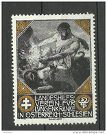 AUSTRIA Österreich Vignette Landeshilfverein Für Lungenkranke In Österreich-Schlesien Wohlfahrt Charity - Nuovi
