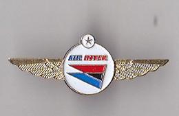 PIN'S  THEME AVION  COMPAGNIE  AIR INTER - Aerei