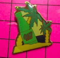 521 Pin's Pins / Beau Et Rare / THEME : BOISSONS / PALMIER DESERT SABLE GINI - Bevande
