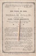 Lichtervelde, 1875, Rosalie Gillis, Vanden Kerckhove - Devotion Images
