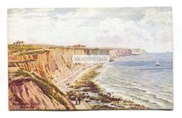 A R Quinton Postcard No. 988 - Blackrock Cliffs, Brighton - Quinton, AR
