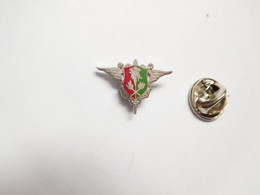 Beau Pin's Pins En EGF , Armée Militaire , SEA , Service Essence Armée - Army