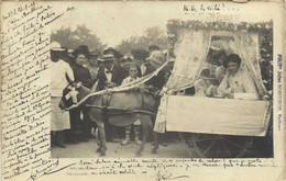 """Carte Photo POITIERS Kermesse Des """"Dames De France Ane Attelé  RARE  RV  Phot Jules Bobuchin Poitiers - Poitiers"""