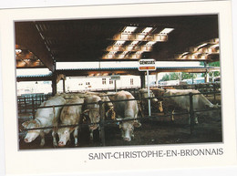 ST CHRISTOPHE EN BRIONNAIS Le Foirail - Autres Communes