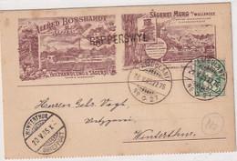 Rapperswil - Holzhandlung & Sägerei Bosshardt - Sägerei Murg - Vorläufer - Stabstempel - 1905          (P-325-10108) - SG St-Gall