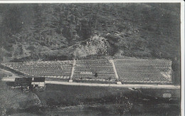 """Cartolina - Postcard /non Viaggiata - Unsent / Cimitero Militare Italiano - """" Eroi Del Sabotino """" Podsabotino - Gorizia - War Cemeteries"""