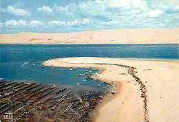 33 - Dune Du Pyla - Banc D'Arguin - Bassin D'Arcachon - CPM - Voir Scans Recto-Verso - Andere Gemeenten