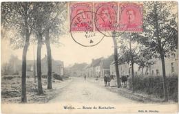 Wellin - Route De Rochefort - Wellin