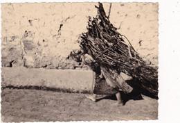 Photo Originale : Algérie : GASTONVILLE :  Femme Chargée De Bois : 1959 : Format 10cm X 7,5cm - Africa