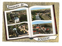 Souvenir De BOUSSAY (44) - Boussay