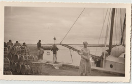 Photo Au Format CPA Moguériec Sibiril (29) Scène Au Port De Pêche  Bateau Fleur Des Ondes , Paniers    Datée 1963 - Places