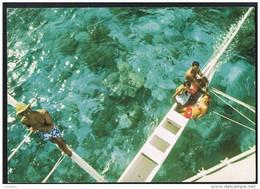 Bora Bora - Promenade En Pirogue à Voile - Native Girls - Femmes Natives - Timbre France - Polinesia Francese