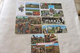 """LOT DE 5 CARTES """"LES VENDANGES"""" - 5 - 99 Postcards"""