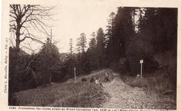 Croisement Des Routes Allant Au Grand Colombier Et L'hôtel Chalet Forestier D'Arvières - Autres Communes