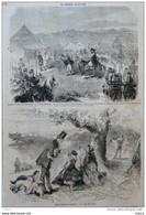 Petites Industries Anglaises - La Traite Des Chiens - Page Original 1859 - Documentos Históricos