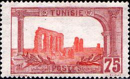 Tunisie Poste N** Yv: 39 Mi:40 Aqueduc Romain De Zaghouan - Unused Stamps