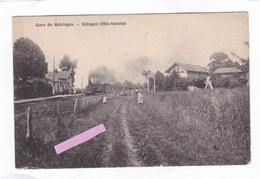 CPA :  14 X 9  -  Gare   De  Mésinges.  -  Allinges  (Hte-Savoie) - Autres Communes