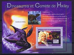 Guinea (Republic) Space 2007 Halley's Comet And Dinosaur - Guinea (1958-...)