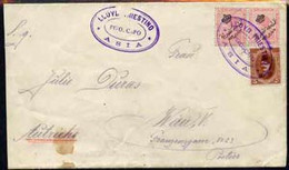 Egypt 1923 Ship Cover To Austria Cancelled By Lloyd Triestino Steamboat ASIA Cachet In Violet, Cover Slightly Reduced By - Unused Stamps