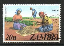 ZAMBIE. N°142 De 1975 Oblitéré. Arachide. - Gemüse