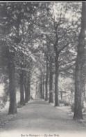 HERENTALS / OP DEN WAL / KOSTSCHOOL ZUSTERS VAN ST FRANCISCUS 1911 - Herentals