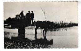 Ille Et Vilaine LE VIVIER SUR MER Arrivage De Bois Aux  Pêcheries (attelage) - Autres Communes
