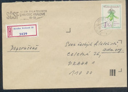 Tschechoslowakei # 2577 Venusschuh. Portorichtige Einzelfrankatur Einschreibebrief - Storia Postale