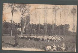 CP - 59 - Fromelles -  Entréedu Bois - Le Troupeau Elbers - Other Municipalities