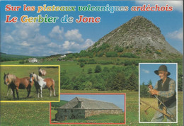 Sur Les Plateaux Volcaniques Ardéchois Le Gerbier De Jonc - (P) - Unclassified