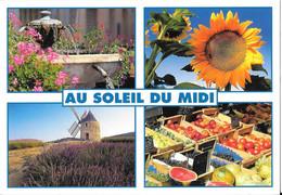 Pays Méditerranéen - Au Soleil Du Midi - Provence-Alpes-Côte D'Azur